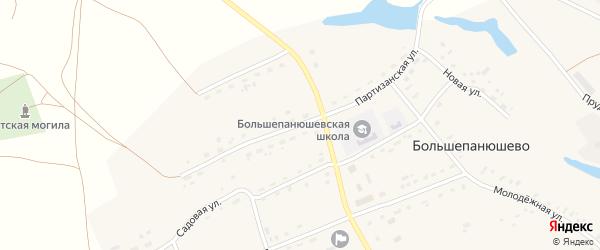 Партизанская улица на карте села Большепанюшево с номерами домов