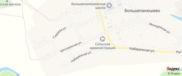 Центральная улица на карте села Большепанюшево с номерами домов