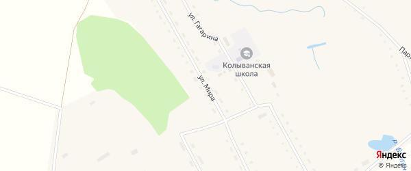 Улица Мира на карте Колыванского села с номерами домов