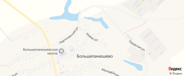 Новая улица на карте села Большепанюшево с номерами домов