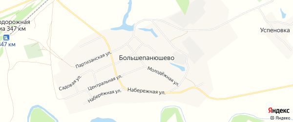 Карта села Большепанюшево в Алтайском крае с улицами и номерами домов