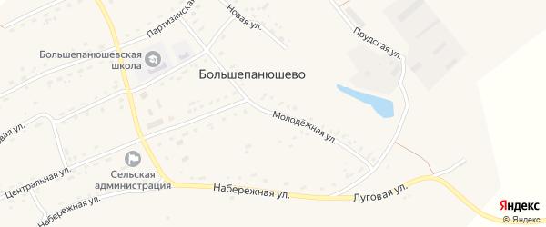 Молодежная улица на карте села Большепанюшево с номерами домов