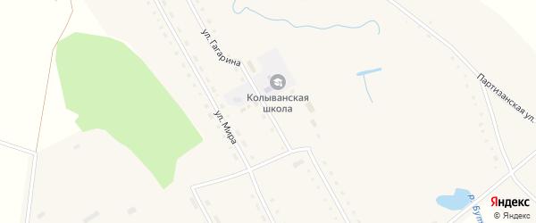 Улица Гагарина на карте Колыванского села с номерами домов