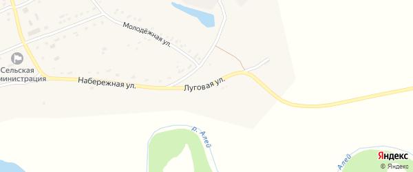 Луговая улица на карте села Большепанюшево с номерами домов
