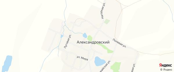 Карта Александровского поселка в Алтайском крае с улицами и номерами домов