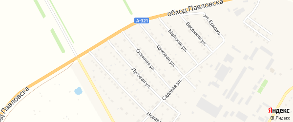 Осенняя улица на карте села Павловска с номерами домов