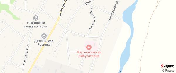 Больничный переулок на карте села Маралихи с номерами домов