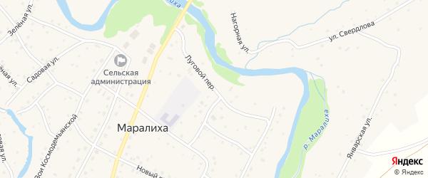 Луговой переулок на карте села Маралихи с номерами домов