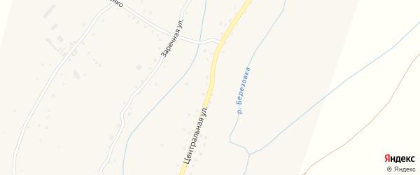 Центральная улица на карте села Березовки с номерами домов