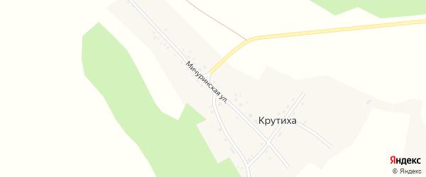 Мичуринская улица на карте поселка Крутихи с номерами домов