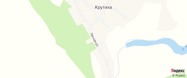 Лесная улица на карте поселка Крутихи с номерами домов