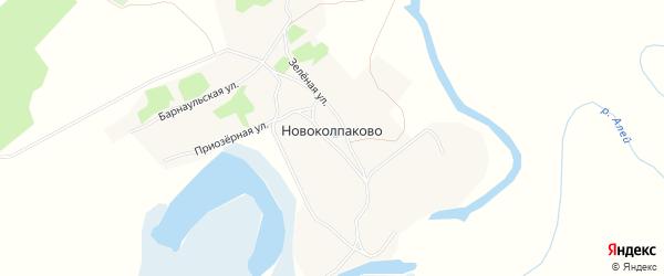 Карта села Новоколпаково в Алтайском крае с улицами и номерами домов