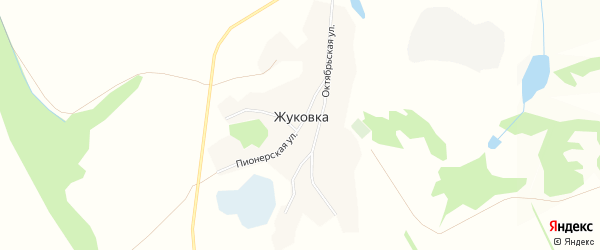 Карта села Жуковки в Алтайском крае с улицами и номерами домов