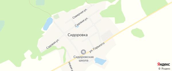 Карта села Сидоровки в Алтайском крае с улицами и номерами домов