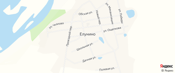 Карта села Елунино в Алтайском крае с улицами и номерами домов