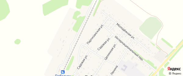 Партизанская улица на карте поселка Победима с номерами домов