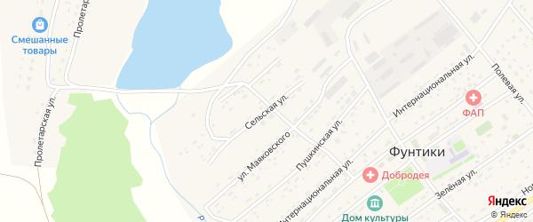 Сельская улица на карте села Фунтики с номерами домов