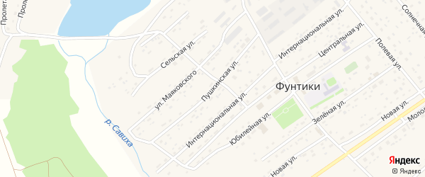 Пушкинская улица на карте села Фунтики с номерами домов