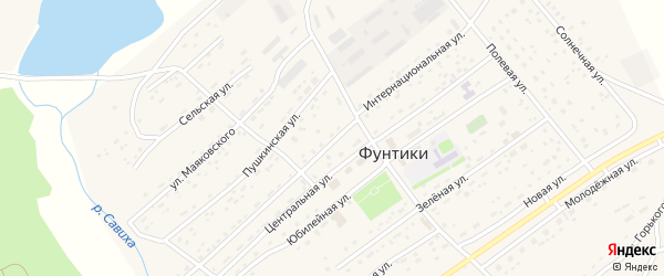 Интернациональная улица на карте села Фунтики с номерами домов