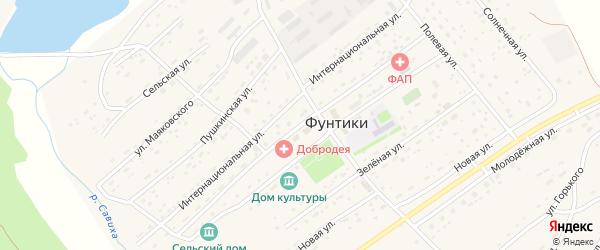 Центральная улица на карте села Фунтики с номерами домов