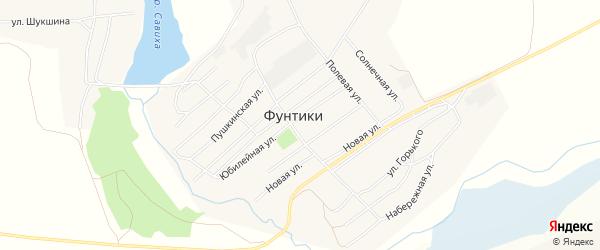 Карта села Фунтики в Алтайском крае с улицами и номерами домов