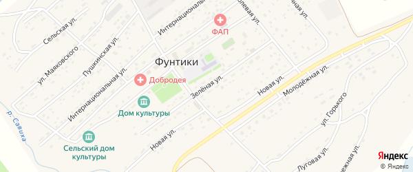 Зеленая улица на карте села Фунтики с номерами домов