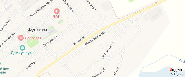 Молодежная улица на карте села Фунтики с номерами домов