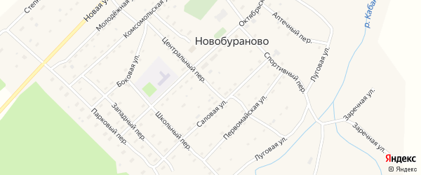 Центральный переулок на карте села Новобураново с номерами домов