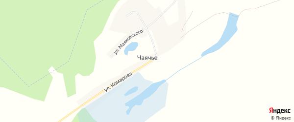 Карта села Чаячьего в Алтайском крае с улицами и номерами домов