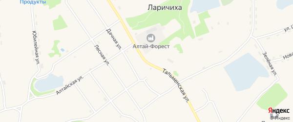 Тальменская улица на карте села Ларичихи с номерами домов