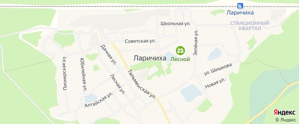 Карта села Ларичихи в Алтайском крае с улицами и номерами домов