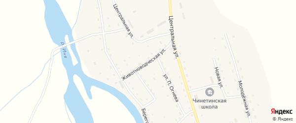 Животноводческая улица на карте села Чинеты с номерами домов