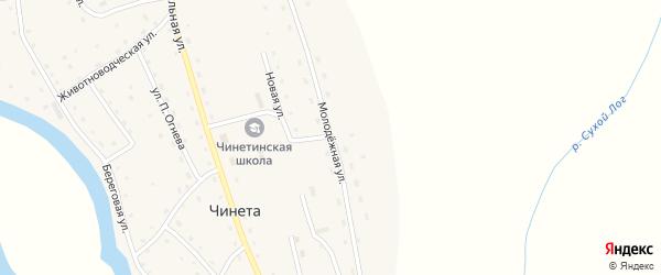 Молодежная улица на карте села Чинеты с номерами домов