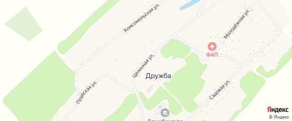 Целинная улица на карте поселка Дружбы с номерами домов