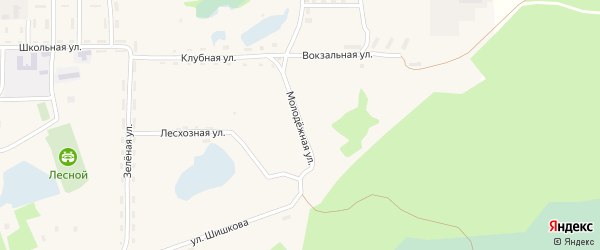 Молодежная улица на карте села Ларичихи с номерами домов