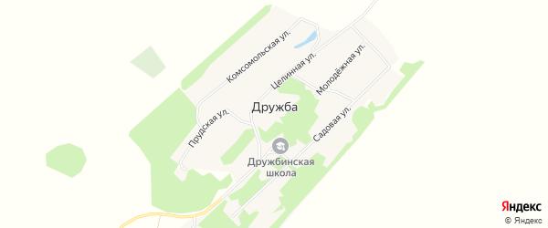Карта поселка Дружбы в Алтайском крае с улицами и номерами домов
