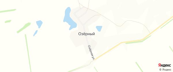 Карта Озерного поселка в Алтайском крае с улицами и номерами домов