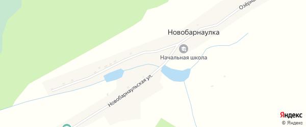 Озерная улица на карте села Новобарнаулки с номерами домов