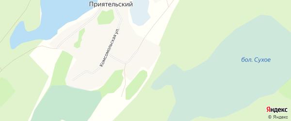 Карта Приятельского поселка в Алтайском крае с улицами и номерами домов