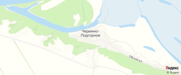Карта Черемна-Подгорного села в Алтайском крае с улицами и номерами домов