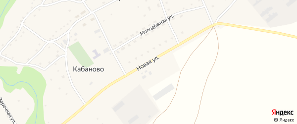 Новая улица на карте села Кабаново с номерами домов