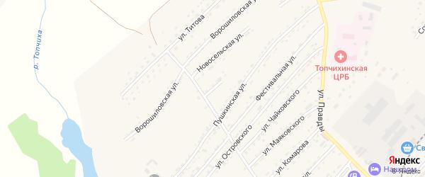 Улица Лермонтова на карте села Топчихи с номерами домов