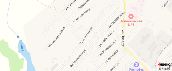 Пушкинская улица на карте села Топчихи с номерами домов