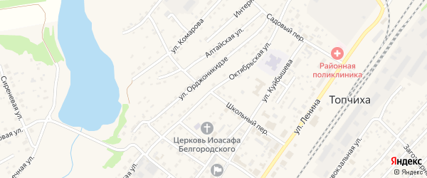 Октябрьская улица на карте села Топчихи с номерами домов