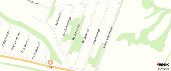 Ягодная улица на карте поселка Сдт Шинник-2 с номерами домов
