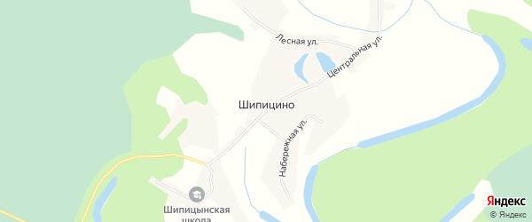Карта села Шипицино в Алтайском крае с улицами и номерами домов