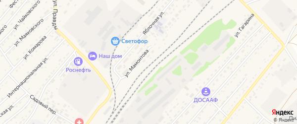 Улица Мамонтова на карте села Топчихи с номерами домов