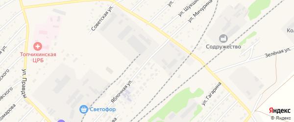 Яблочная улица на карте села Топчихи с номерами домов