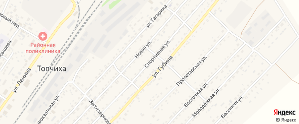 Спортивная улица на карте села Топчихи с номерами домов