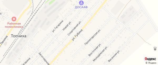 Улица Губина на карте села Топчихи с номерами домов